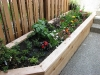 Raised cedar landscape bed with new plantings