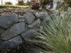 White River Basalt boulder retaining wall and landscape plantings - Seattle, Ecoyards.