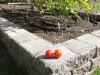 Raised vegetable bed with RomanStack retaining wall blocks - Montlake, Ecoyards.