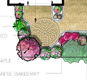 Landscape Design by Ecoyards, Seattle, WA