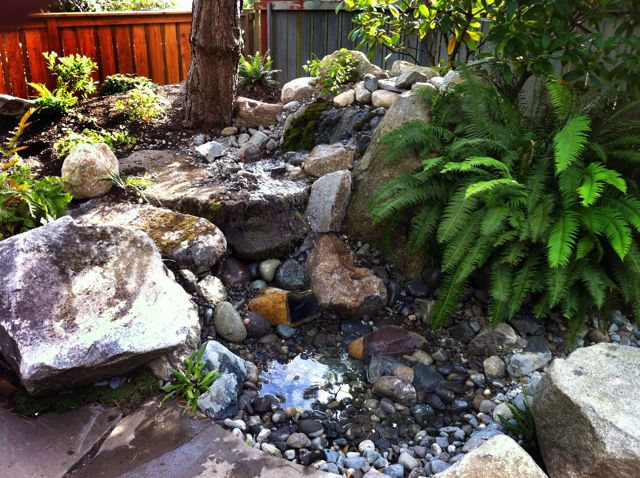 Pondless Waterfall In West Seattle