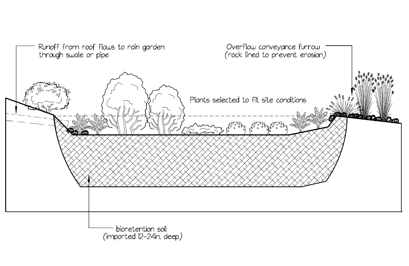 Seattle rain gardens rain garden installer cisterns Ecoyards