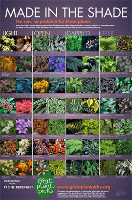 Great Plant Picks 2012 Ecoyards