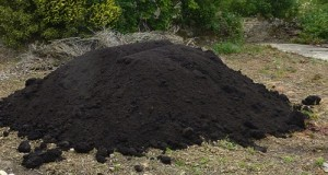 Compost pile. Photo by Bryn  Pinzgauer, Creative Commons License.